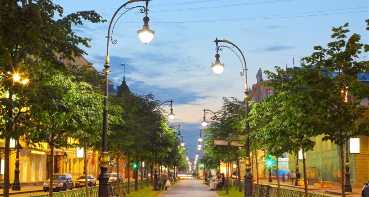 A beautiful city street lined with trees on both sides.