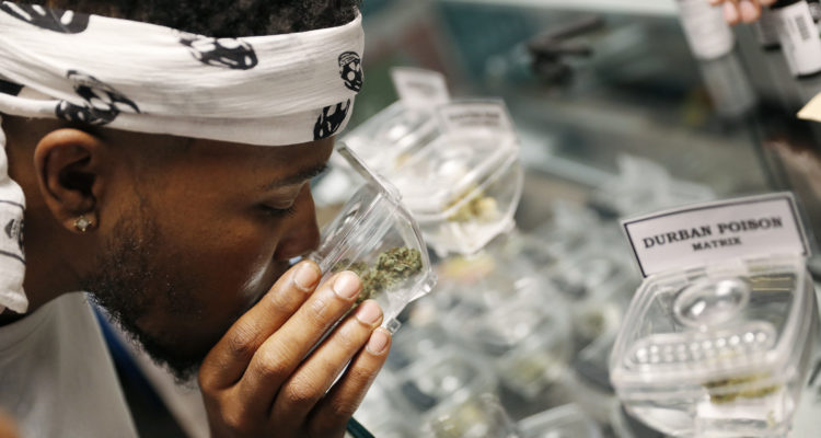 Photo of man shopping for marijuana at a legal shop in Las Vegas