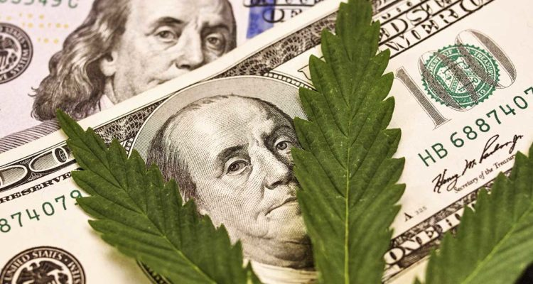 Photo Illustration of Marijuana Leaves and $100 bills