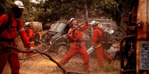 Image of Yosemite Firefighters