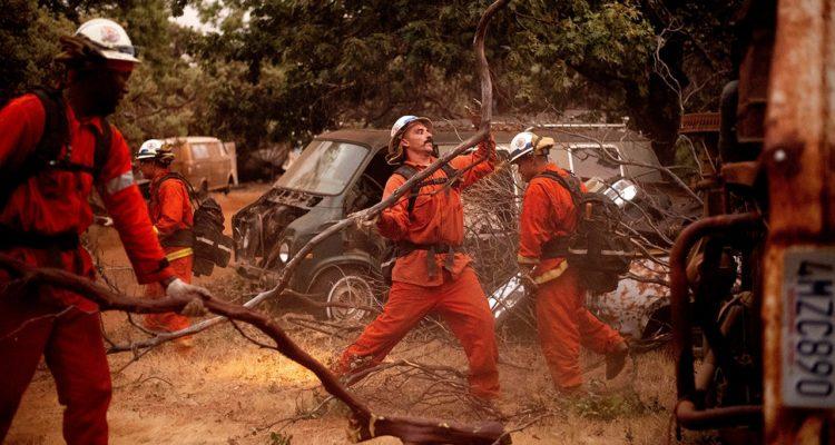 Image of Yosemite Firefighters