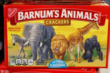 Photo of redesigned animal cracker box/packaging