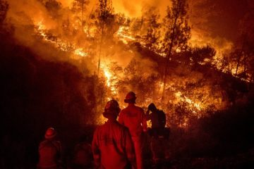 Photo of firefighters monitoring backfire in Ladoga, CA