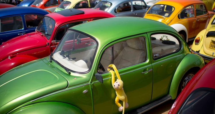 """Photo of VW Beetles at an annual gathering of the """"Beetle club"""""""