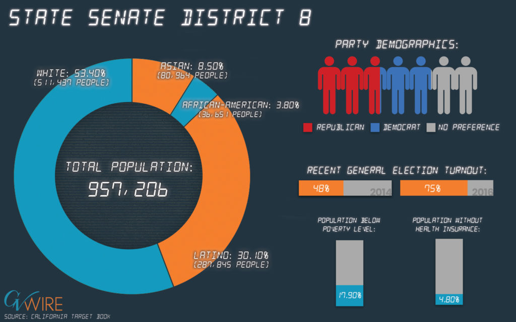 Infographic showing State Senate 8 population demographics