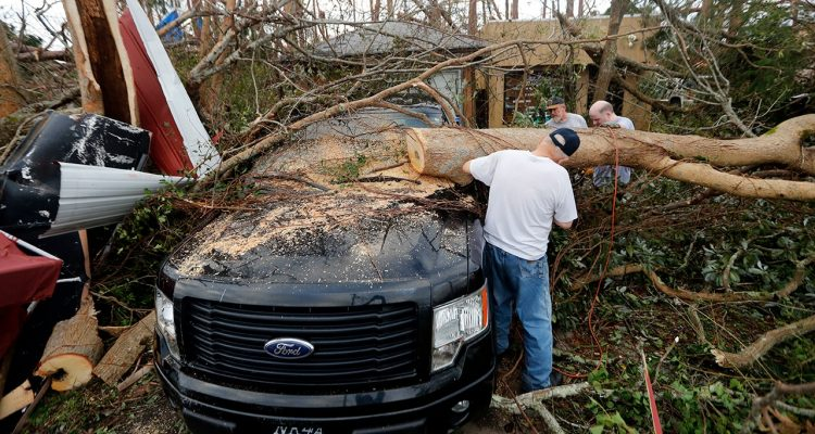 Photo of people cutting away at a tree the fell on a vehicle during Hurricane Michael