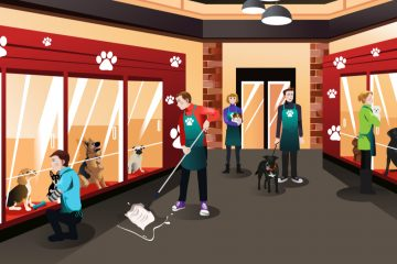 Vector illustration of a modern animal shelter