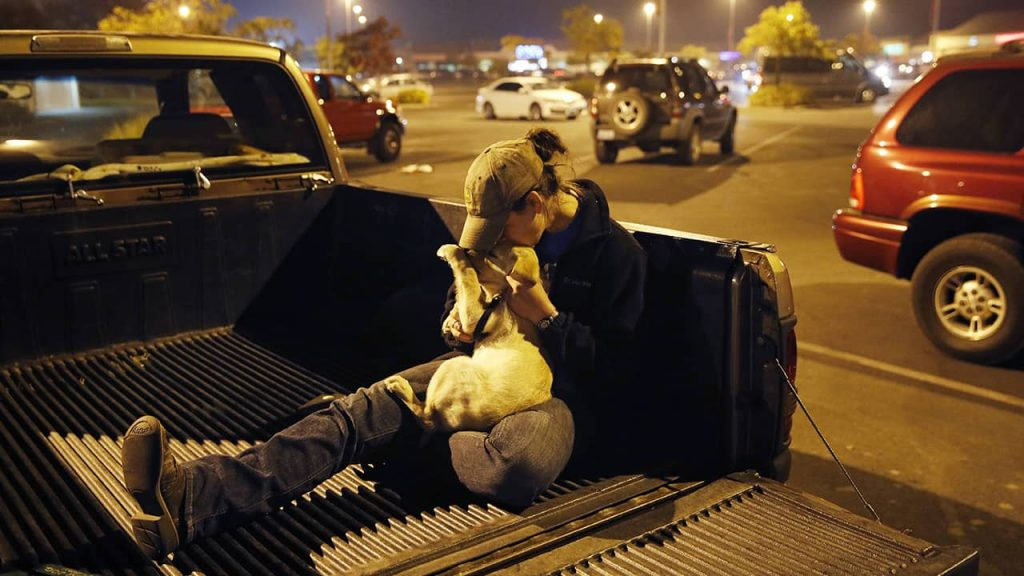 Photo of a Paradise fire survivor and her dog in the bed of a pickup truck