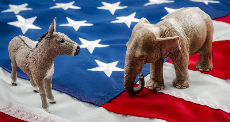 Photo of a donkey and an elephant on an American flag