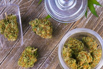 Photo of cannabis buds in glass jars