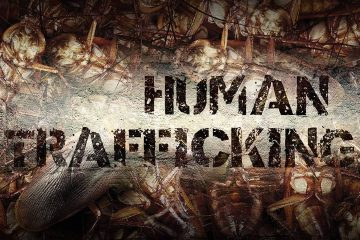 "Illustration of cockroaches and the words ""human trafficking'"