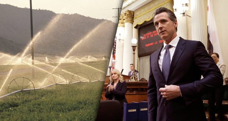 Photo of San Joaquin Valley and Gavin Newsom
