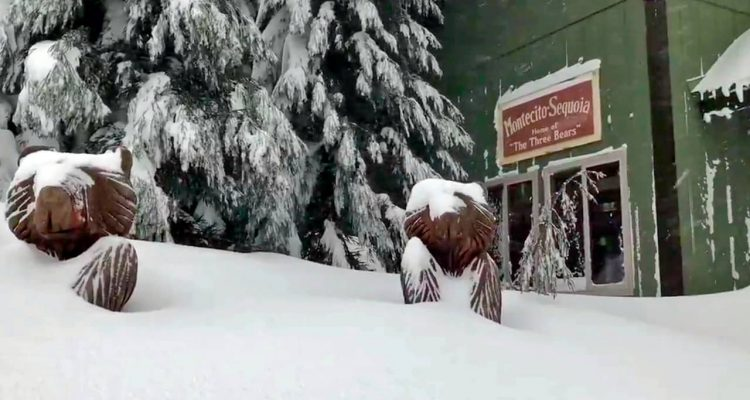 Photo of snow surrounding Montecito Sequoia Lodge in Kings Canyon National Park