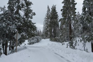 Photo of snow on Highway 168 below Shaver Lake