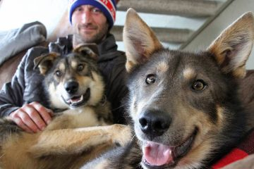 Photo of Iditarod musher Nicolas Petit posing with two of his dogs in Anchorage