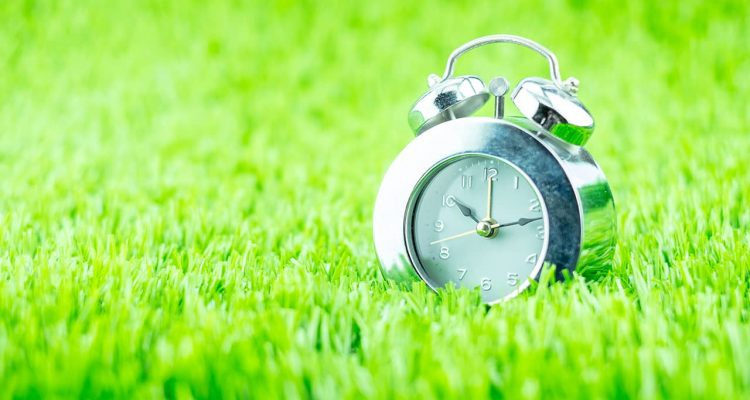 Photo of a clock sitting in grass