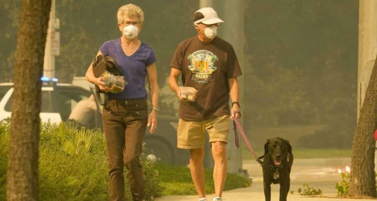 Photo of a couple and dog walking in smoke