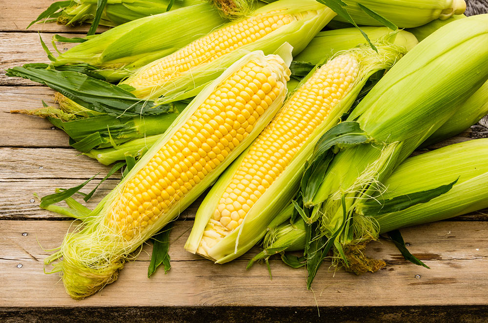 Heads Up, Fans of Fresno State's Famous Sweet Corn — It's Almost Here