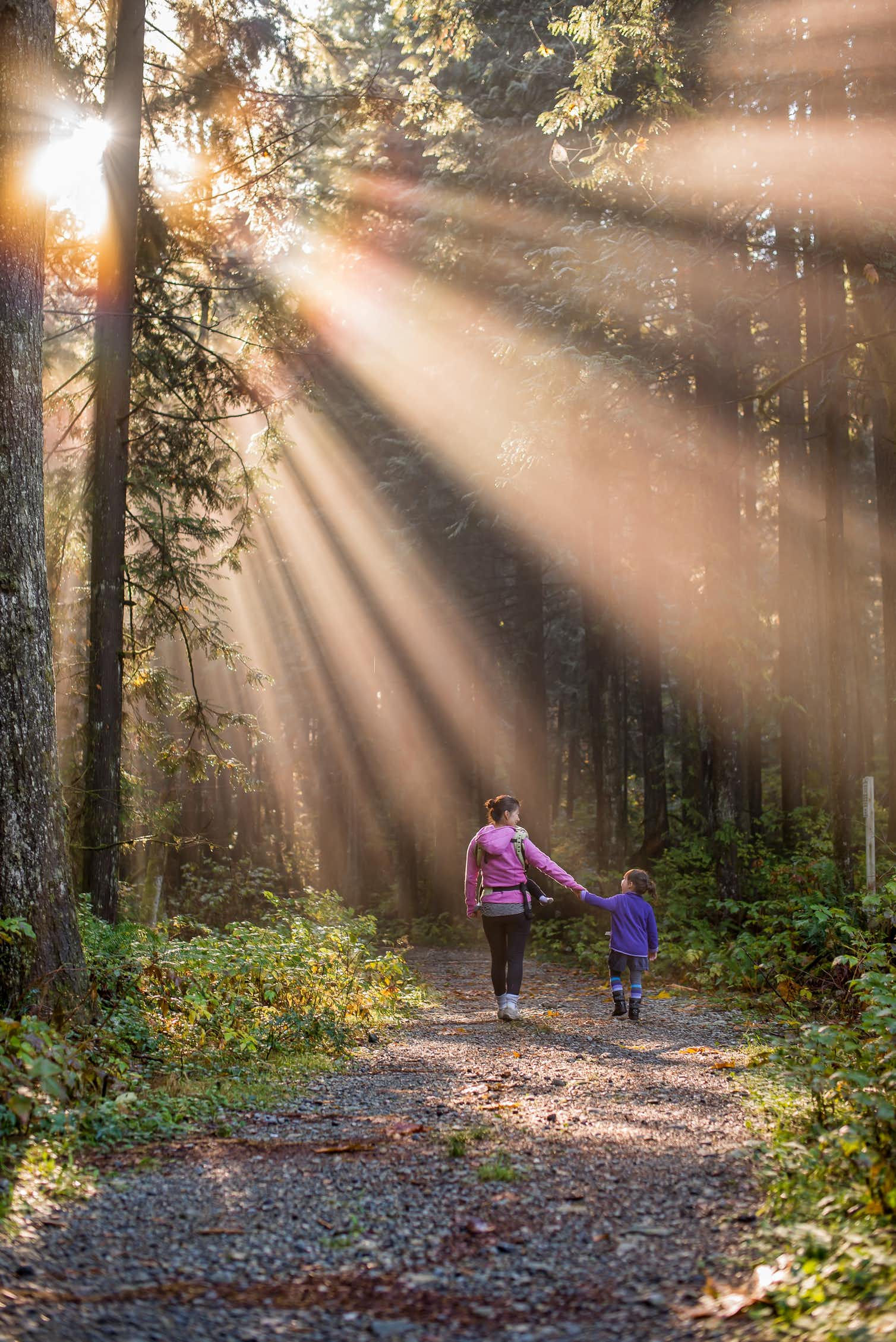 Photo of mother and child walking in a forest