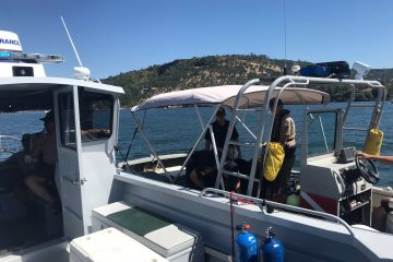 Photo of a Tuolumne County Sheriff's Office search boat.