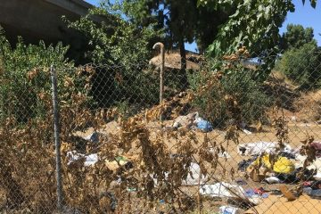 Photo of trash and weeds along a Fresno freeway