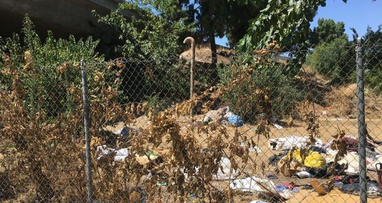 Photo of trash and weeds along a Fresno freeway