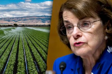 Composite of Valley farm field and U.S. Sen. Dianne Feinstein