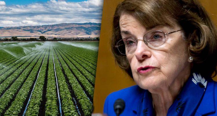 Composite of Valley farm field and U.S. Sen. Dianne Feinstein