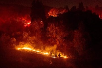 Photo of firefighters working to contain a wildfire in Moraga, Ca.