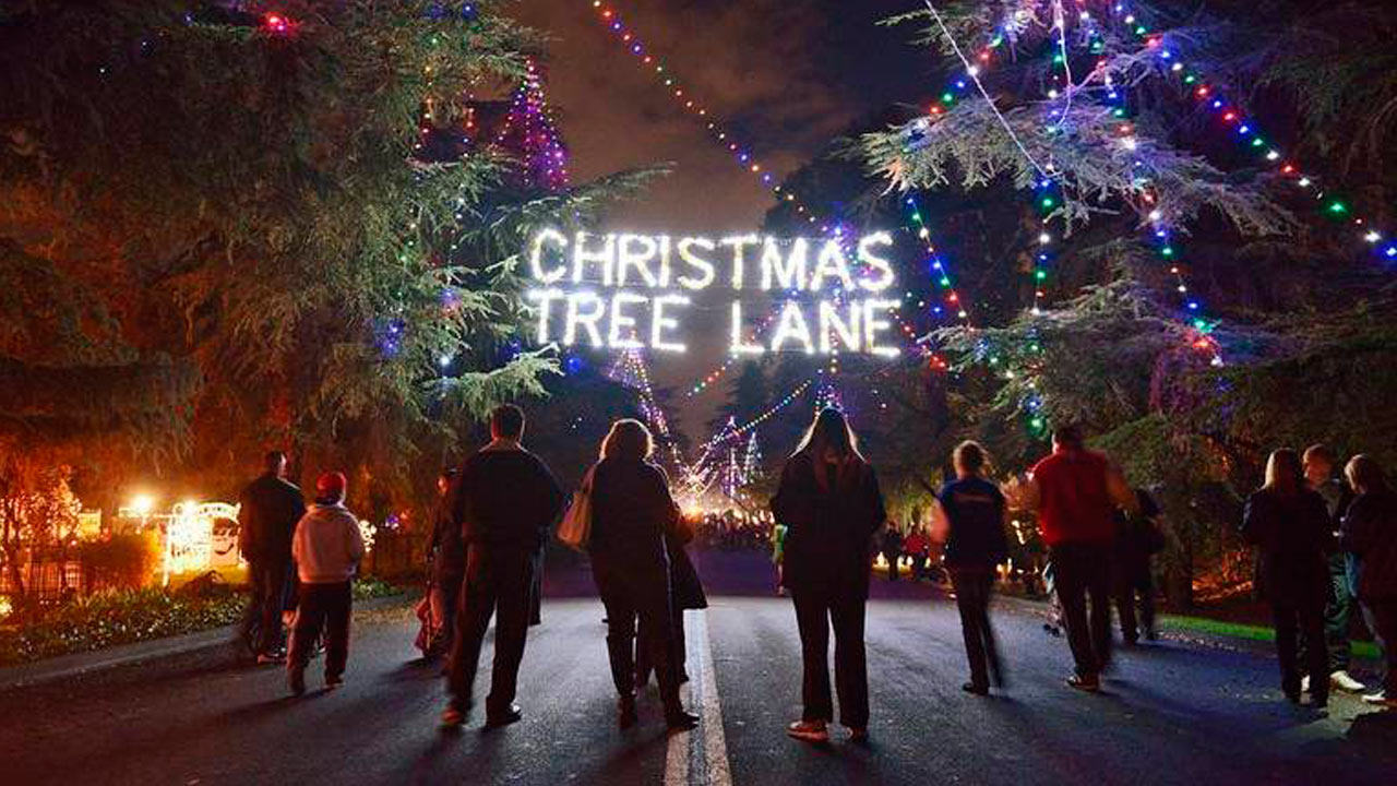 Fresno Christmas Tree Lane 2020 First Christmas Tree Lane Walk Is Tuesday   GV Wire