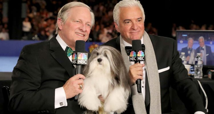 Photo of David Frei, left, and host John O'Hurley posing with a havanese dog