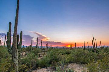 Photo of Tucson, Arizona