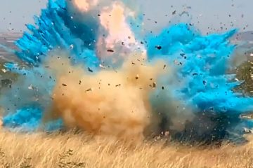 Photo of a gender reveal event