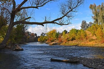Photo of the Kern River flowing through Hart Park during fall