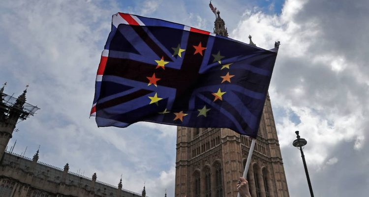 Photo of a pro EU protestor waving flags opposite the House of Parliament in London