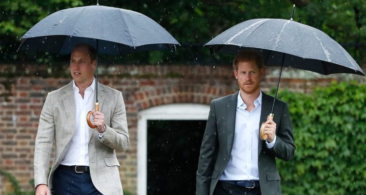 Photo of Prince William and Prince Harry