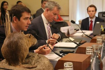 Photo of Rep. Josh Harder with a stuffed swamp rat at a congressional hearing