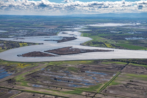Photo of the San Joaquin River as it flows through California's Delta