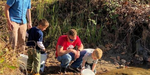 Photo of volunteers releasing trout fry into the Kings River