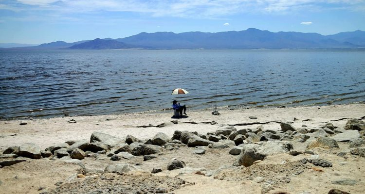 Photo of Salton Sea near Bombay Beach, Calif.