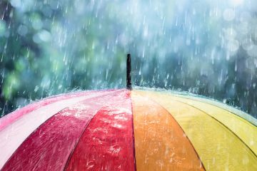 photo of a rainbow colored umbrella