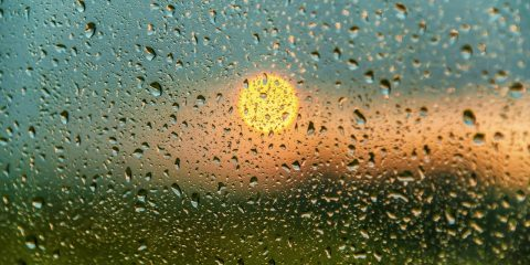 picture of sun poking through raindrops