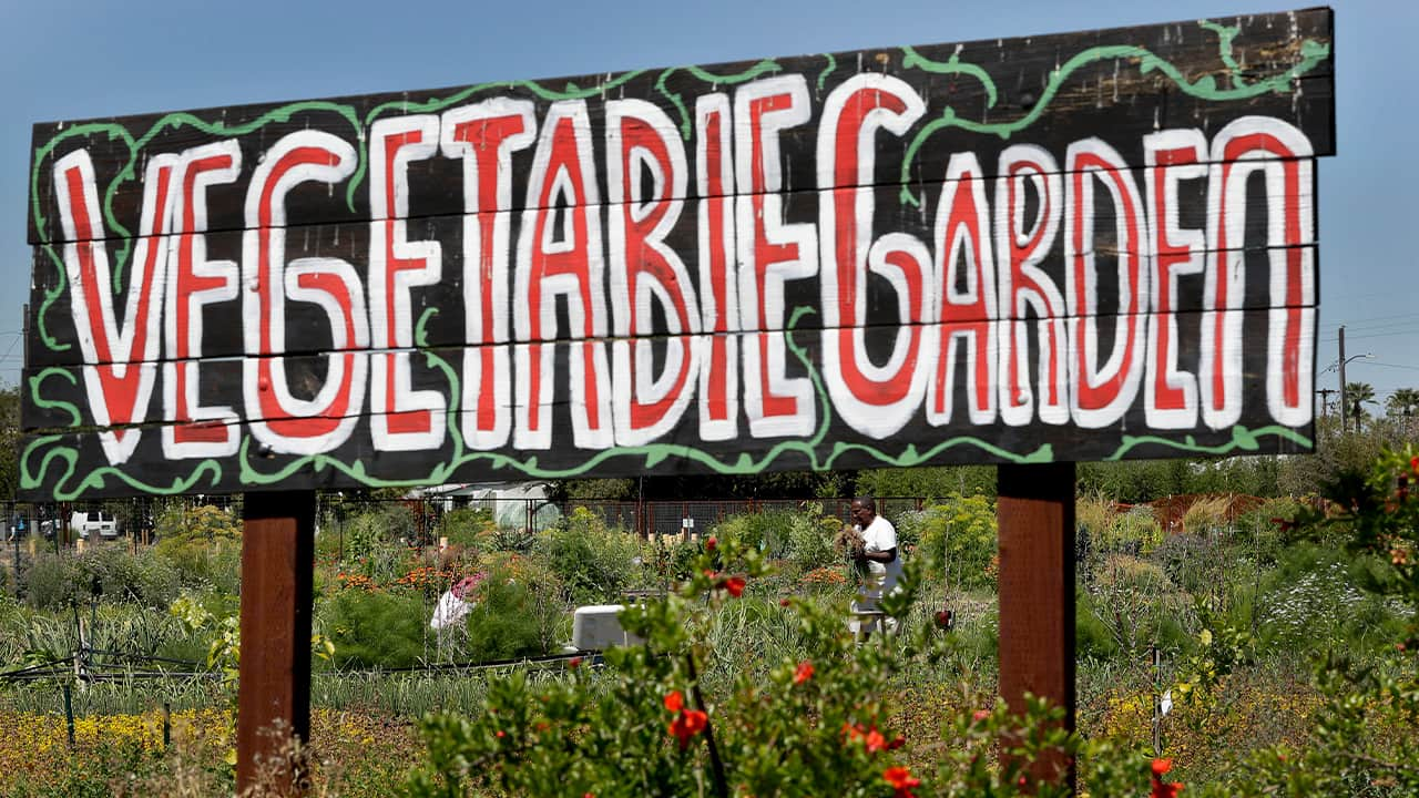 """Photo of a sign that says """"Vegetable Garden"""""""