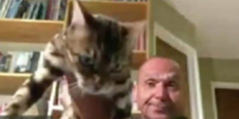 Photo of Chris Platzer, a planning commissioner for Vallejo, Calif. holding his cat