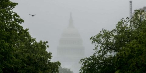 Photo of the dome of the U.S. Capitol