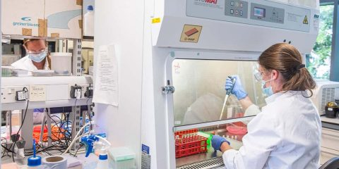 Image of sample from coronavirus vaccine trials being handled at the Oxford Vaccine Group laboratory in Oxford, England