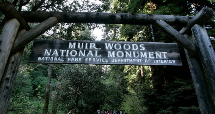 Photo of visitors walking along a pathway near the entrance to the Muir Woods National Monument in Marin County,