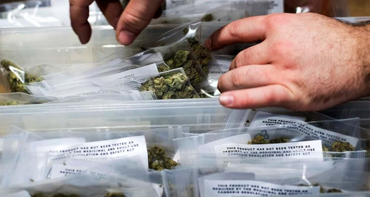 Photo of cannabis packaged for recreational sales