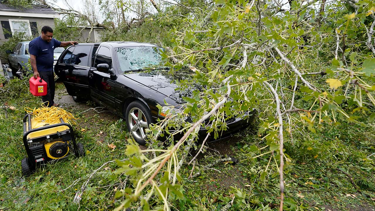Photo of a tree fallen on a car because of Hurricane Laura