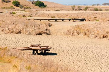 Photo of a parched California wetland